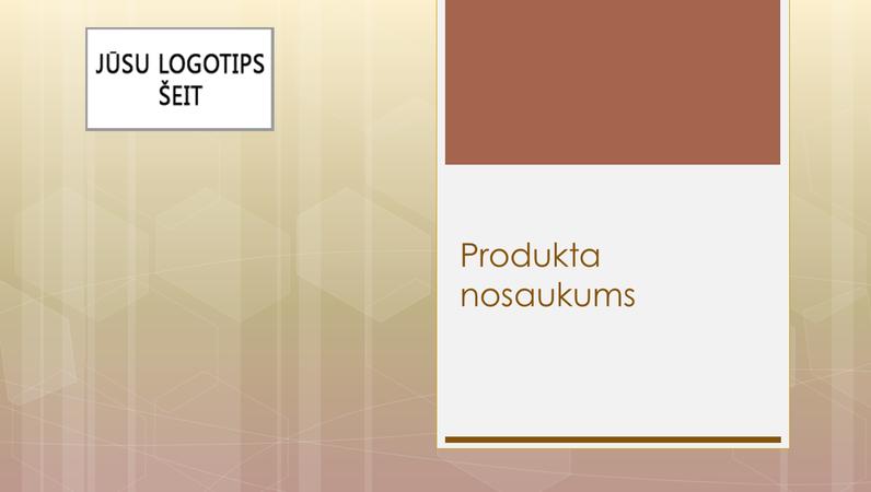 Prezentācija par uzņēmējdarbības produkta pārskatu