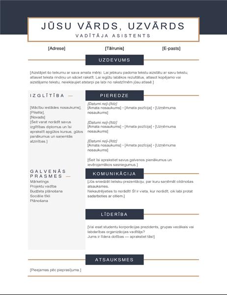Minimālistisks CV