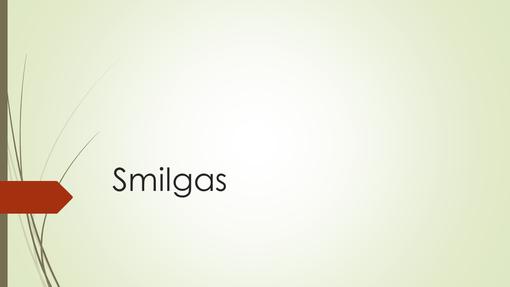 Smilgas