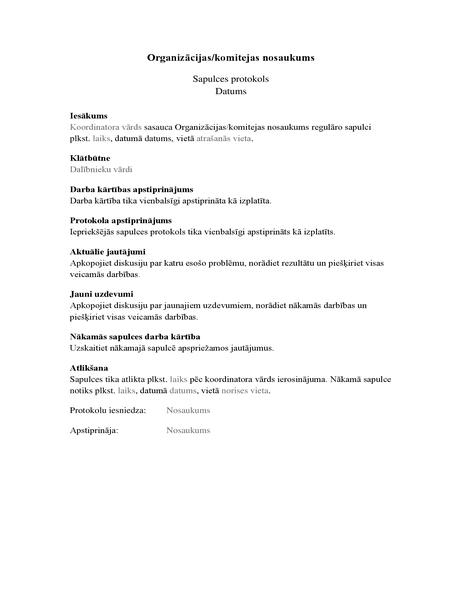 Organizācijas sapulces protokols (garā veidlapa)