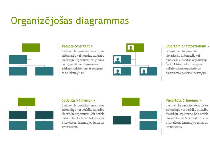 Organizāciju struktūras (vizuāli)