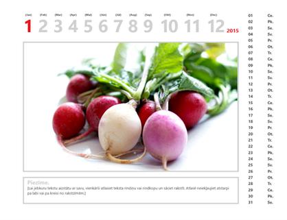 2015.gada fotoattēlu kalendārs