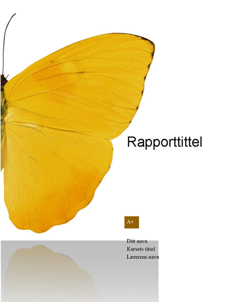 Studentrapport