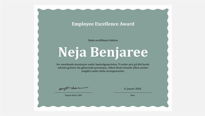 Diplom for utmerket arbeid for ansatte