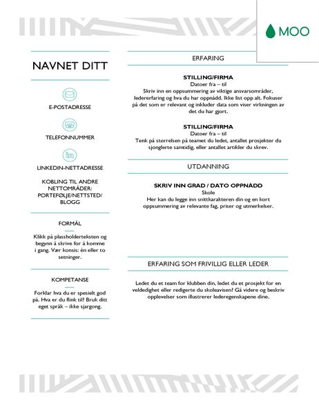 Kreativ CV, utformet av MOO