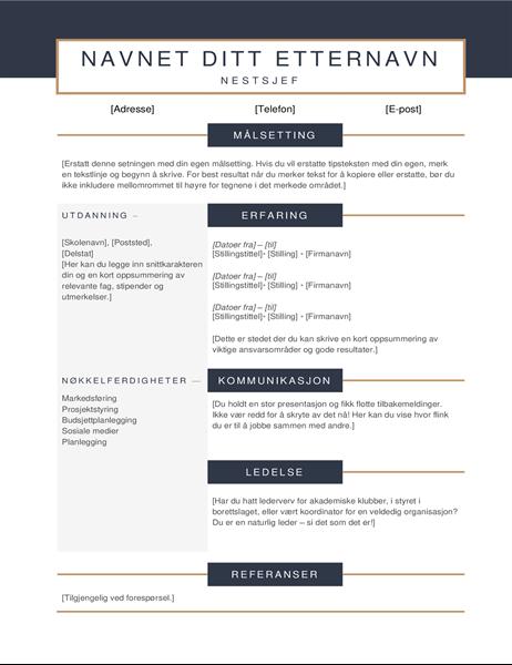 Minimalistisk CV