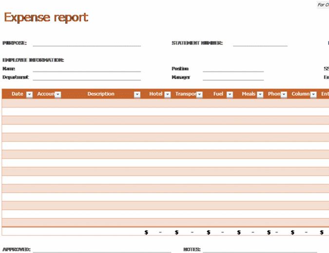 Utgiftsrapport