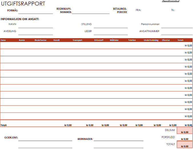Rapport for utgifter