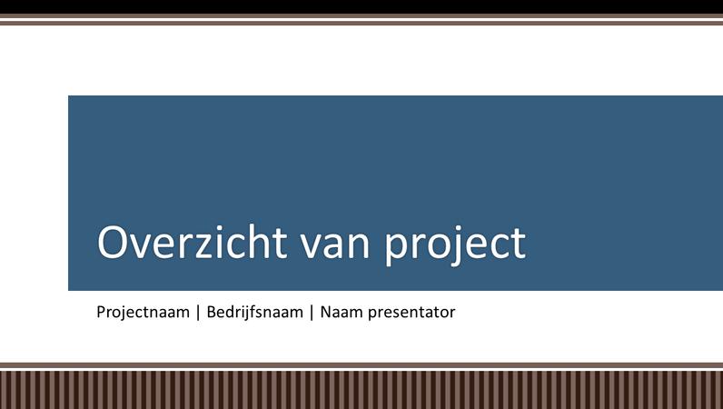 Présentation générale du planning d'un projet professionnel