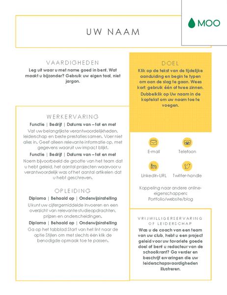 Strak en zakelijk resumé, ontworpen door MOO