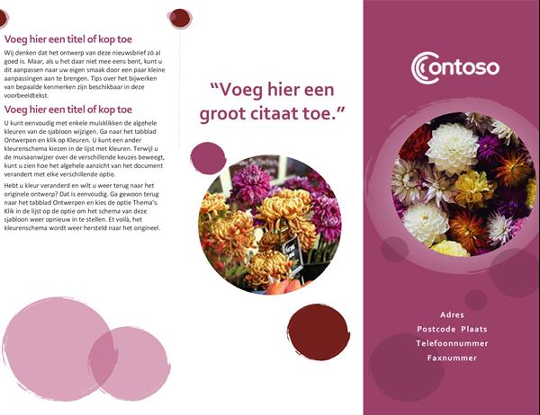 Roze suite brochure