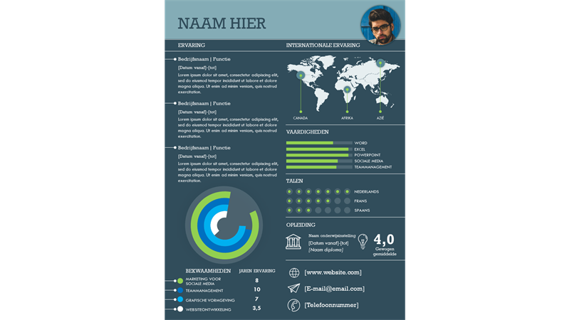 Internationaal infographic CV