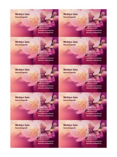 Visitekaartjes (foto van bloem)