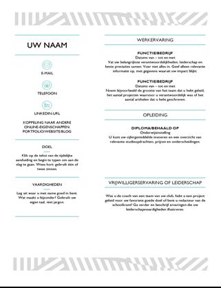 Creatief CV, ontworpen door MOO