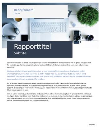 Zakelijk rapport (thema Oorsprong)