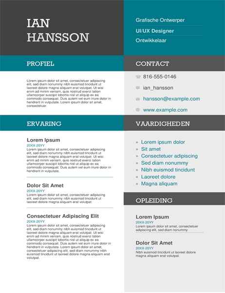 Color block resume