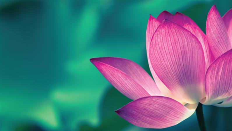 Facebook-banners met bloemen