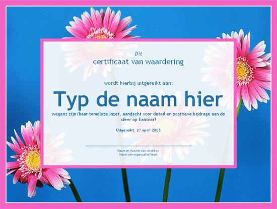 Certificaat voor administratief medewerker (met achtergrondfoto)