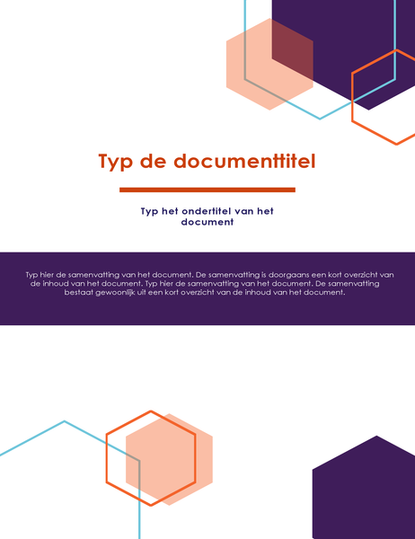 Rapport (ontwerp Executive)