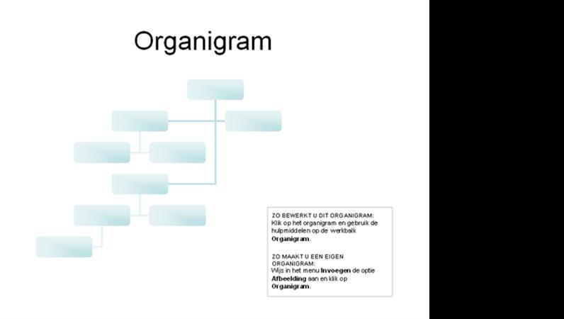 Een complex organigram