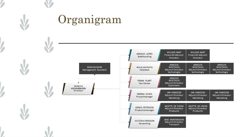 Horizontaal organigram