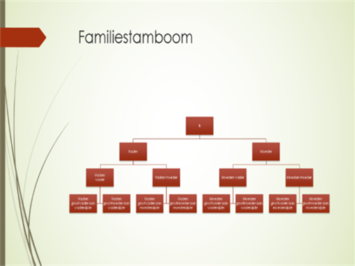 Stamboomdiagram (verticaal, groen, rood, breedbeeld)