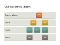 Organigram met hiërarchie (breedbeeld)