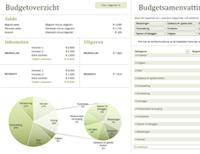 Familiebudget met grafieken