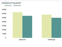 Maandelijks bedrijfsbudget