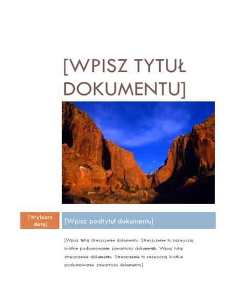 Raport (projekt Średni)