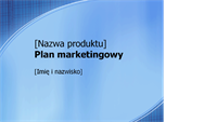 Prezentacja planu marketingowego