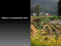 Animowane obraz i tytuł rozwijane na slajdzie