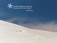 Krajobraz z animowanym śniegiem