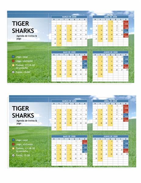 Agenda de bolso de 2008 para esportes da juventude (meses de primavera)