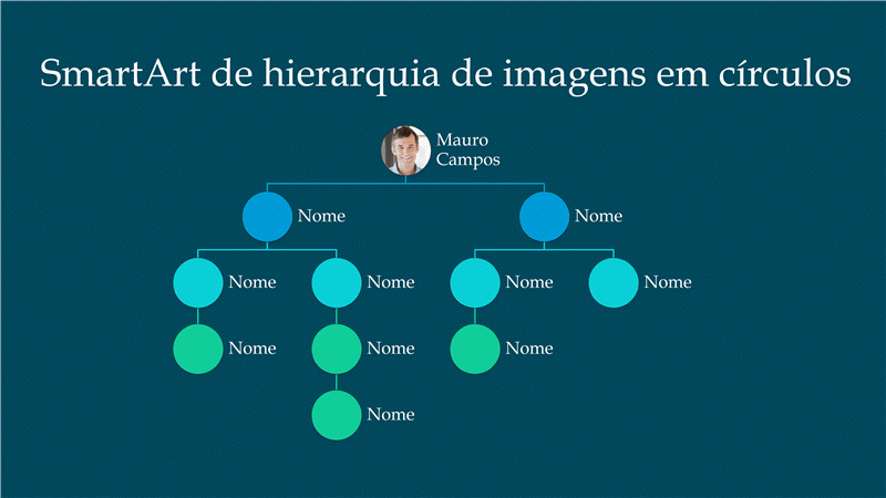 Slide de organograma da hierarquia de imagens em círculo (preto no branco), widescreen