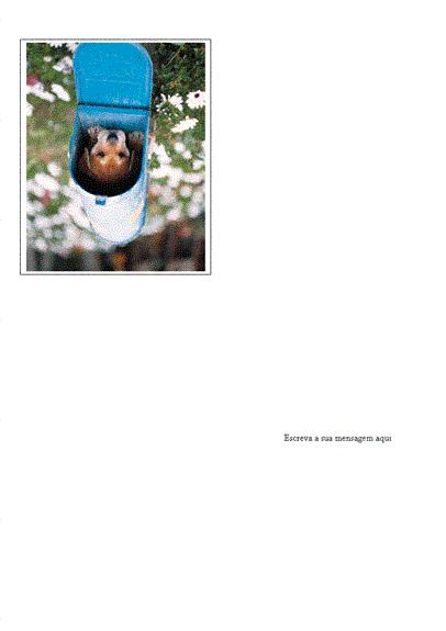 Cartão de mensagem com foto
