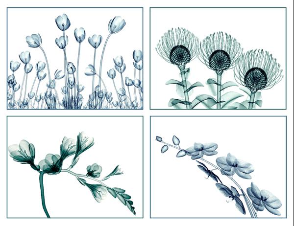 Cartões florais de mensagens (10 cartões, 2 por página)