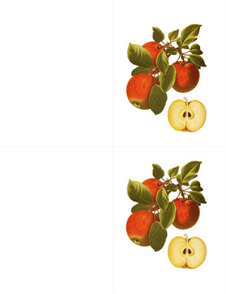 Cartões de mensagens botânicos (10 cartões, 2 por página)