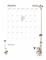 Calendário de 2013