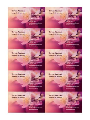 Cartões de visita (fotografia de flor)