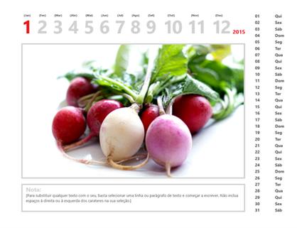 Calendário de fotografias de 2015