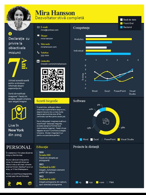 CV cu grafic informativ tehnic