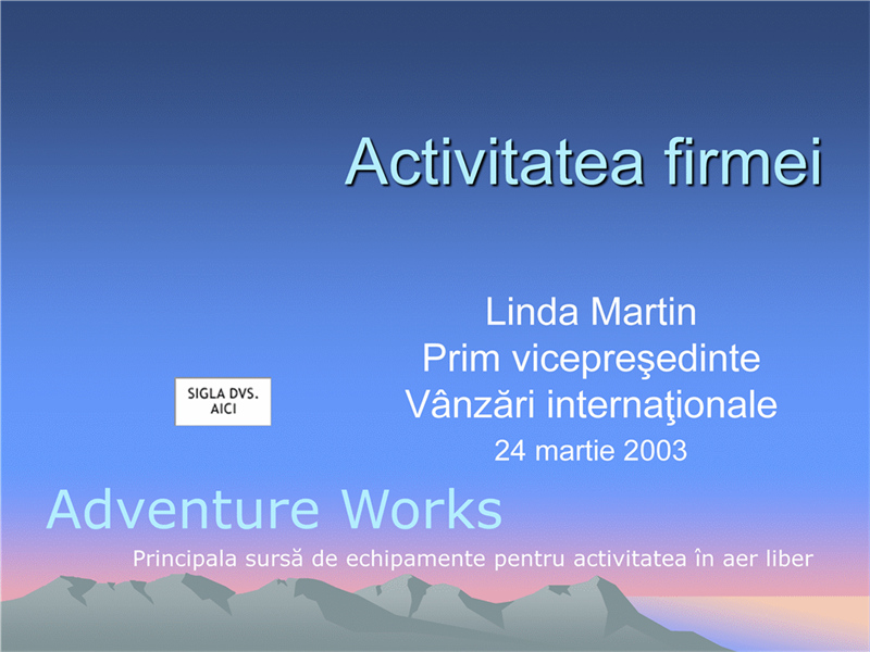 Prezentarea activității firmei