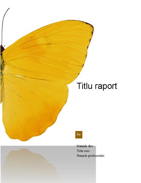 Raport pentru elevi