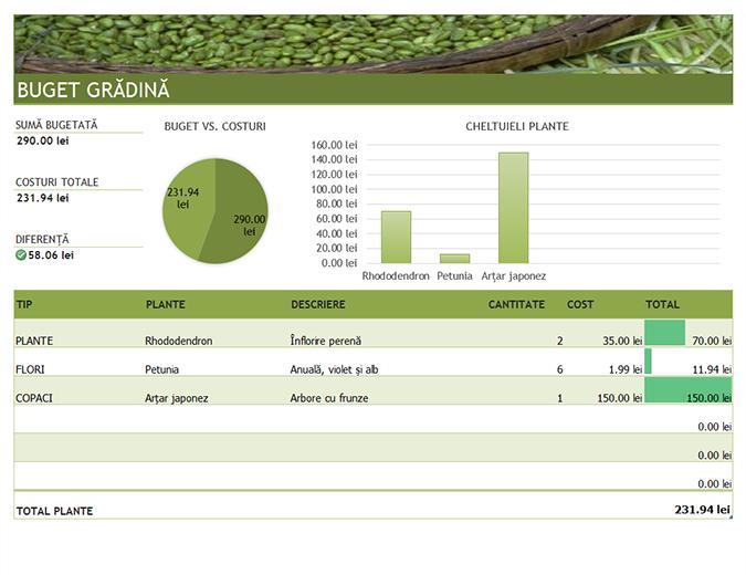 Buget pentru grădină și peisagistică