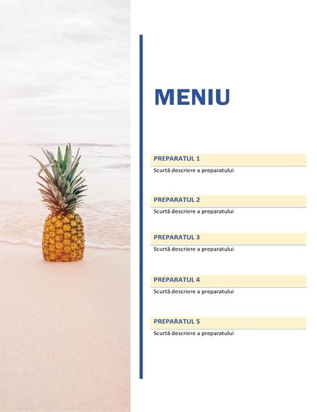 Meniu de petrecere (proiectarea Soare și nisip)