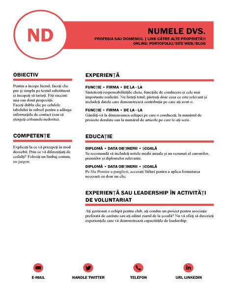CV îngrijit, proiectat de MOO