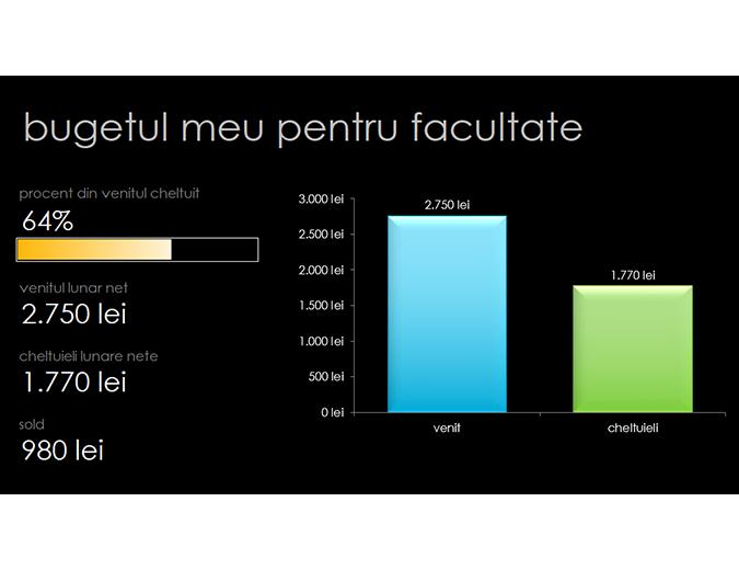 Bugetul meu pentru facultate