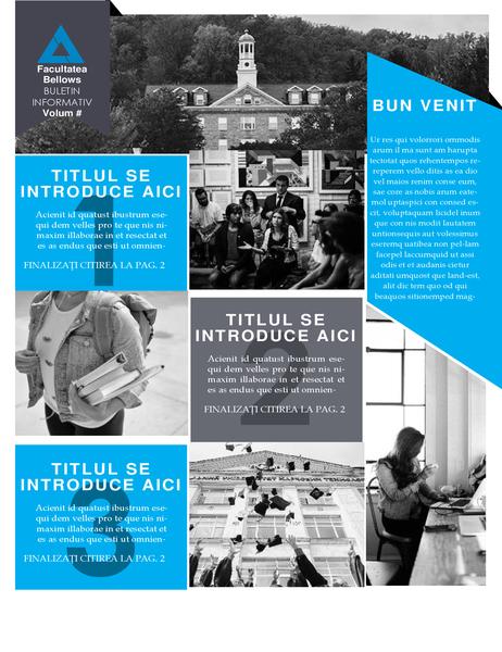 Buletin informativ al facultății