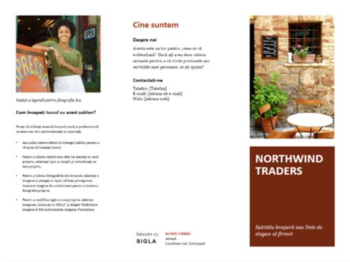 Broșură de afaceri dispusă pe trei pagini